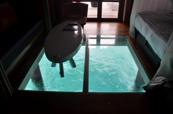 room picture of le meridien bora bora bora bora tripadvisor. Black Bedroom Furniture Sets. Home Design Ideas