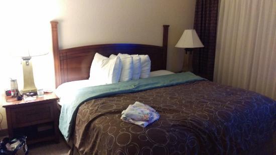 Staybridge Suites San Antonio Sea World : Bed - comfortable