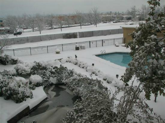 Monarch Hotel and Conference Center: Courtyard - Let it Snow!