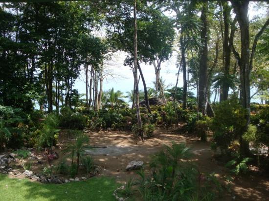Casa Dos Rios: vista