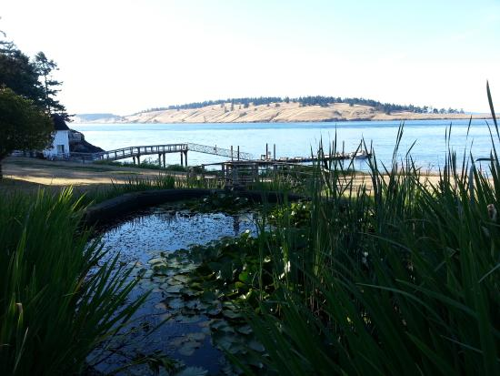 Lonesome Cove Resort: Beautiful grounds include ponds