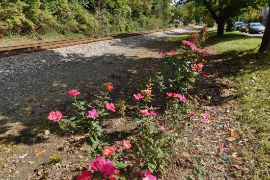 Historic Frankfort Avenue: Railroad tracks run parallel to Frankfort Avenue