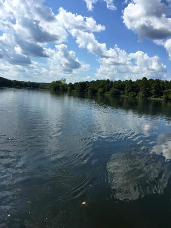 Taneycomo Lakefront Resort And Rv Park Prices