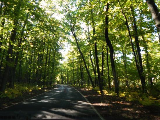 Emmet County, MI: 27 miles of this