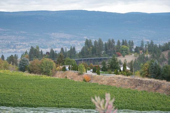 Summerland, Kanada: Good winery with interesting past.
