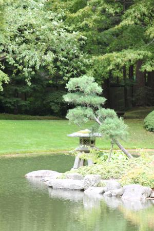 Shrine and bonsai - Picture of Nitobe Memorial Garden, Vancouver ...