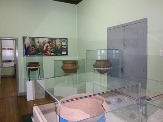Antonio Selistre de Campos Museum