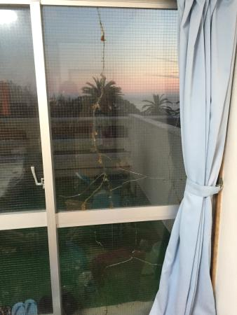 Marine Plaza Y's Dream: photo1.jpg
