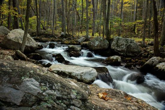 Pearisburg, فيرجينيا: Cascades