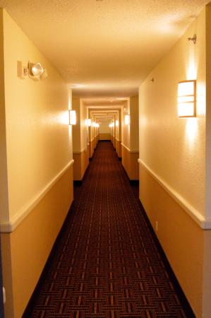 Super 8 Sault Ste. Marie : 3rd. Floor Hall