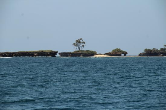 Kenia: vue du bateau