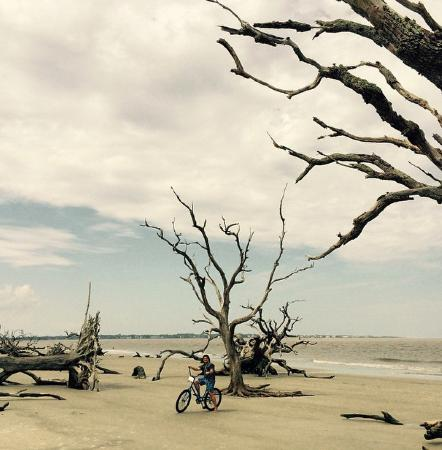 Jekyll Island Club Resort Bike Riding At Driftwood Beach