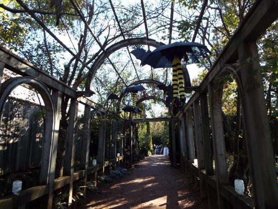 Annapolis Royal, Canada: Spooky Scene