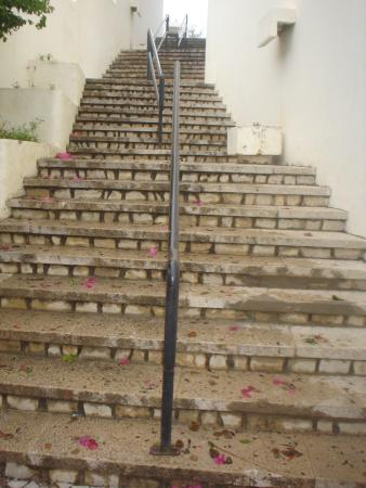 Albufeira Jardim - Apartamentos Turisticos: Steps