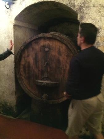 Tenuta di Ghizzano - Wine Tour