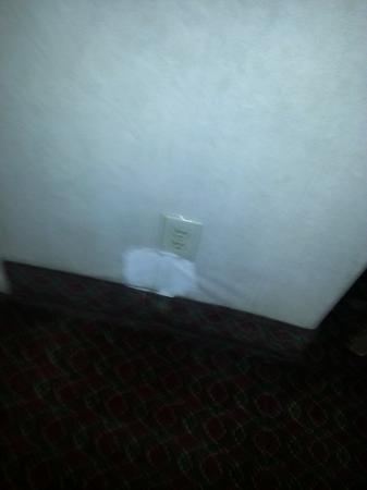Motel 6 Santa Fe Central: room