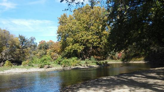 Pontiac, IL: Humiston Woods October 2015