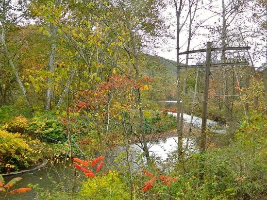 Titusville, Pensilvania: Crossing over Oil Creek