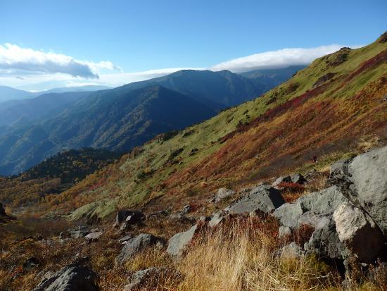 Mt. Yake: 草もみじ