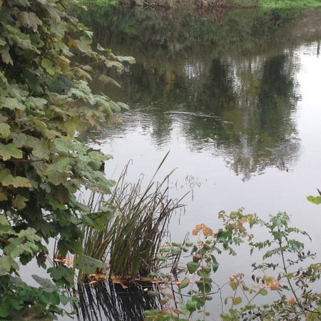 Hotel Minella: River Suir