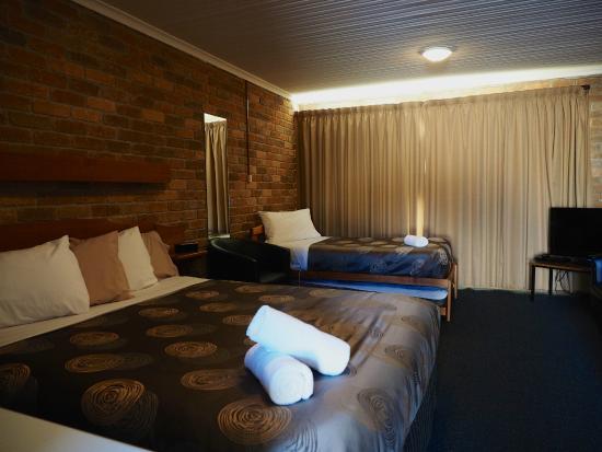 Burnie Ocean View Motel and Holiday Caravan Park: Studio Park View Motel Room