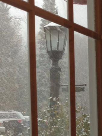 Tucker Hill Inn: View from Dining Room