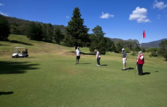 Mt Beauty Golf Club: 5