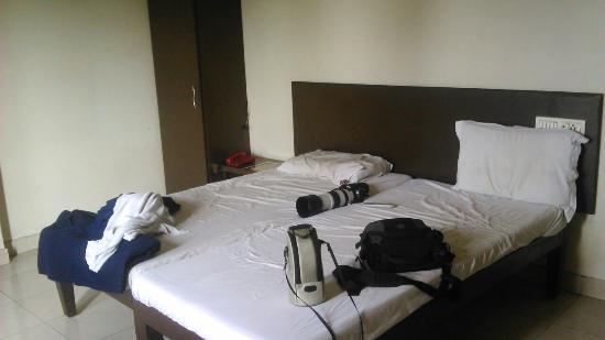 Hotel Morya: DSC_0246_large.jpg