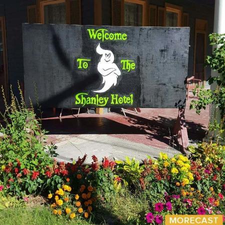 Napanoch, NY: Shanley Hotel