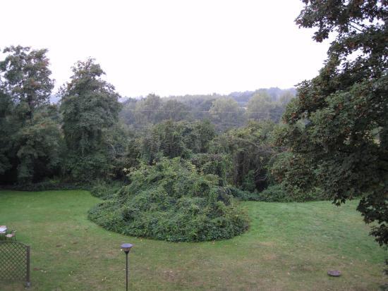 Modlnica, Polonia: Le jardin
