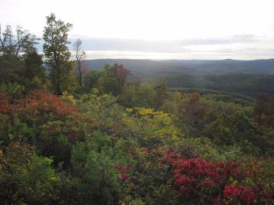 Ozark Mountains: Celebrating autumn