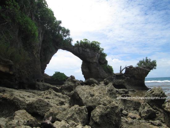Looks Like Pineapple Picture Of Howrah Bridge Neil