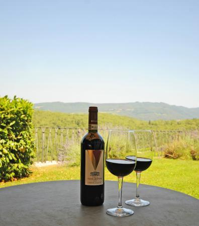 Villa  Vistarenni: Our Wine