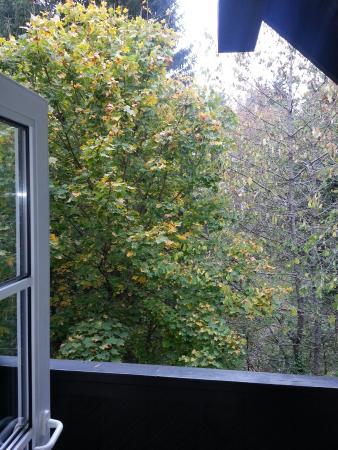 Relexa Hotel Harz-Wald: 20151013_153808_large.jpg