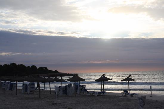 Appartamentos Club Sa Coma: Beach at sunrise, stunning!!