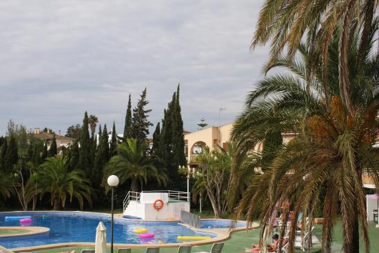 Appartamentos Club Sa Coma: Pool and palm trees