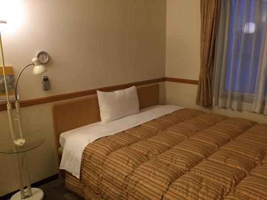 Toyoko Inn Sakaihigashi Eki: 東横イン堺東