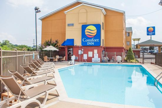 Comfort Inn Nashville/White Bridge: Pool