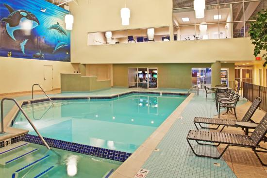 Swimming pool picture of holiday inn flint flint - Holiday inn hotels with swimming pool ...