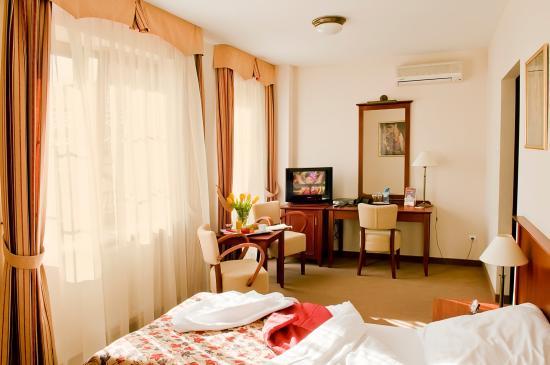 Pokój dwuosobowy hotel DWOREK*** Skierniewice