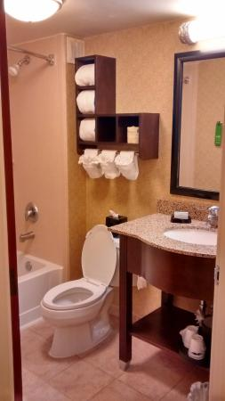 Hampton Inn Indianapolis - NE / Castleton: Bathroom