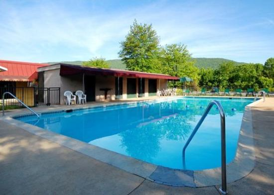 Burnham, PA: Pool