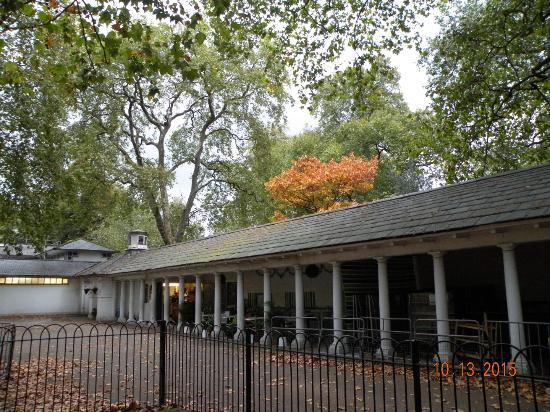 Coram's Fields: Pistachio's Cafe inside park