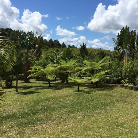 7 Cascades: Beuatiful gardens