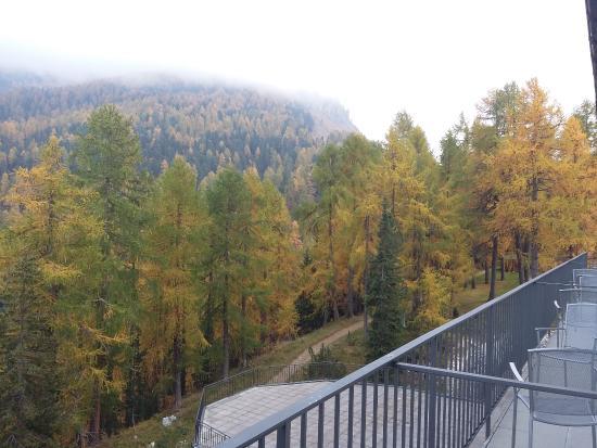 Hotel Waldhaus: Autumnal view