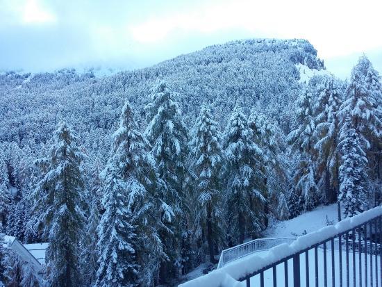 Hotel Waldhaus: Overnight snow fall!