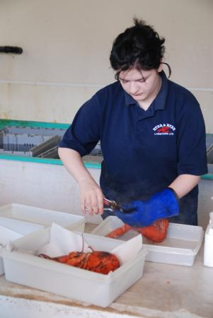 Ryer Lobsters: Cracking the Cooked Lobsters