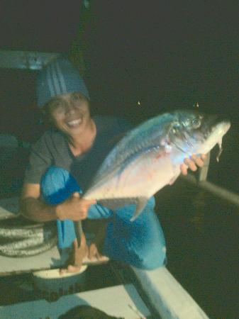 Pemenang, Indonesia: ikan mesidung