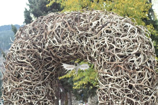 Jackson Hole, WY: Arch of Antlers