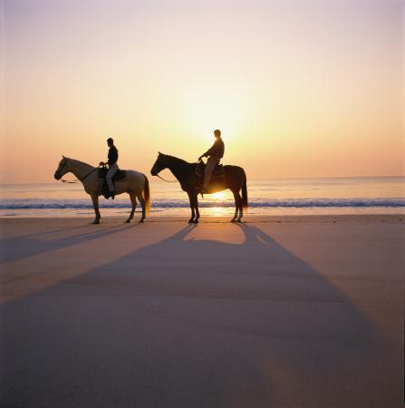 Amelia Island, FL: One of the few places in the country where one can ride along the beach horseback.